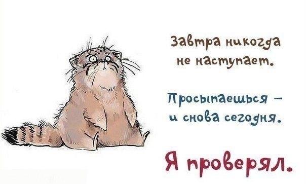 http://cs308127.userapi.com/v308127073/5023/gKITQ3TToyk.jpg