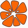 Клуб роллер спорта «Оранжскул»