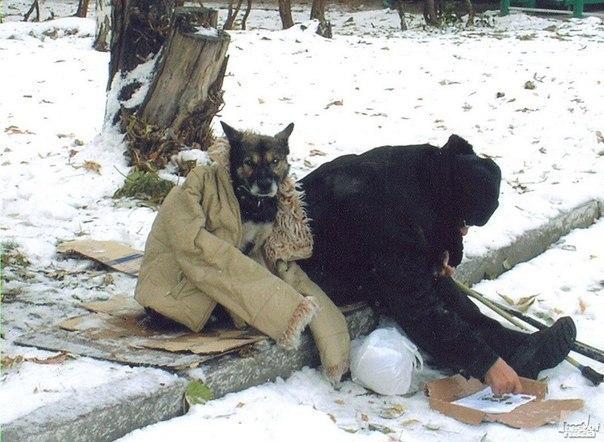 он убегал в него стреляли люди проваливаясь лапой в рыхлый снег: