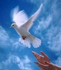 фото мир без войны