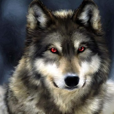 Wolf White, 5 октября 1983, Димитровград, id172701175