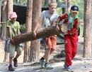 обустройство лагеря, заготовка дров (13.06.2013)