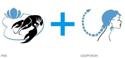 Как дружат девушка-скорпион и парень-рак?