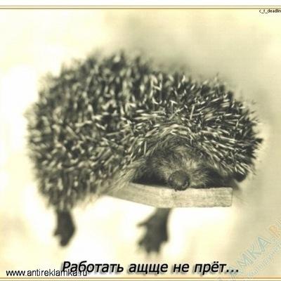Галина Егорова, 3 ноября , Казань, id111645467