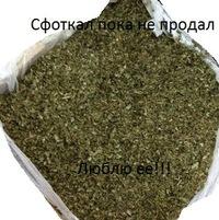 Доменик Джокер, 4 ноября , Москва, id197931643