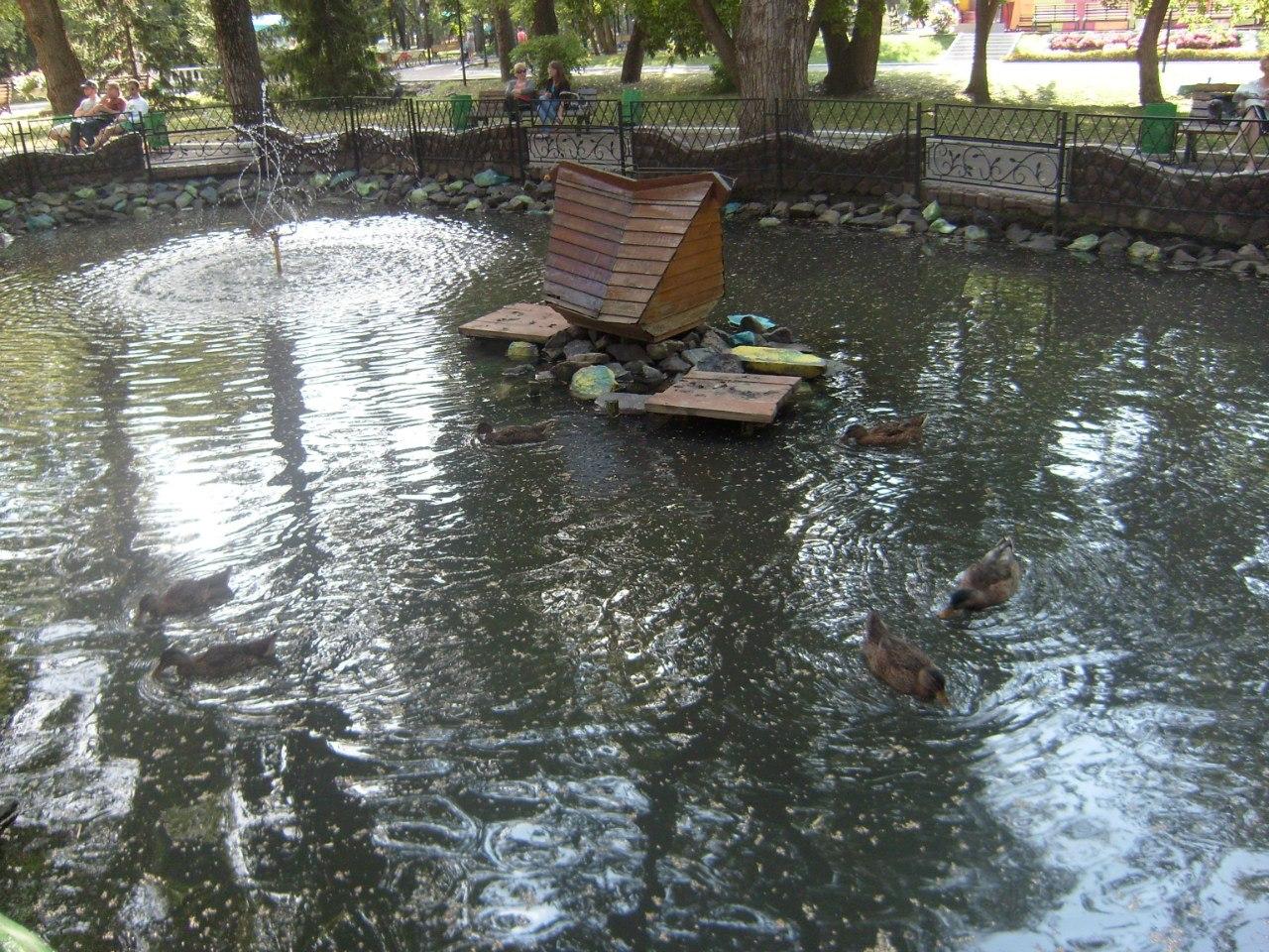 Колодец в пруду