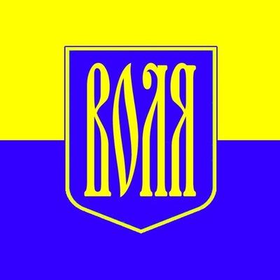 Свитан Александр, 10 августа , Донецк, id167325575
