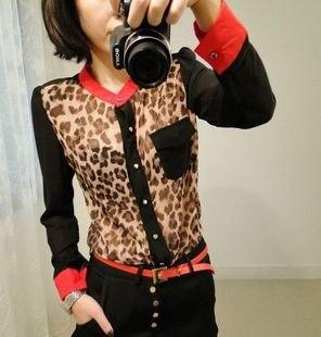 Леопардовые Блузки Фото