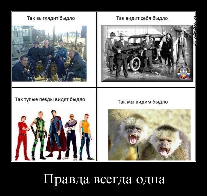 Архив приватных фотографий вконтакте Палыч