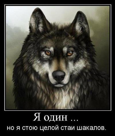 Чингиз Калиев, 15 июня 1997, Москва, id217510695