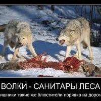 Гамзат Ханвердиев, 18 июля , Махачкала, id199582320