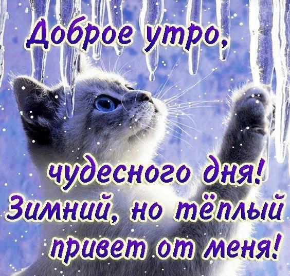 http://cs308330.userapi.com/v308330782/389a/L2s49dKFmAQ.jpg
