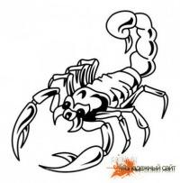 """Предпросмотр - Схема вышивки  """"Скорпион черно-белый """" - Схемы автора  """"sergdv """" - Вышивка крестом."""