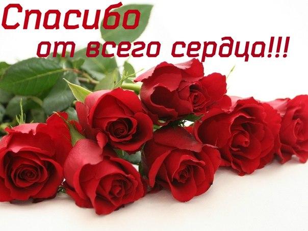 Благодарности форуму и форумчанам :)