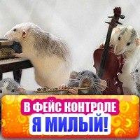 Vahe Gabrelyan, 14 июля 1998, Киев, id202590273