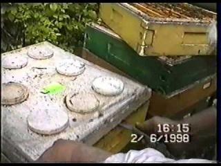 Пчеловодство-2 (Польша) на рамку 145