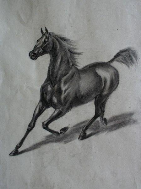 рисунки черным карандашом: