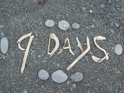 осталось 9 дней картинки