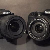 Как научиться фотографировать