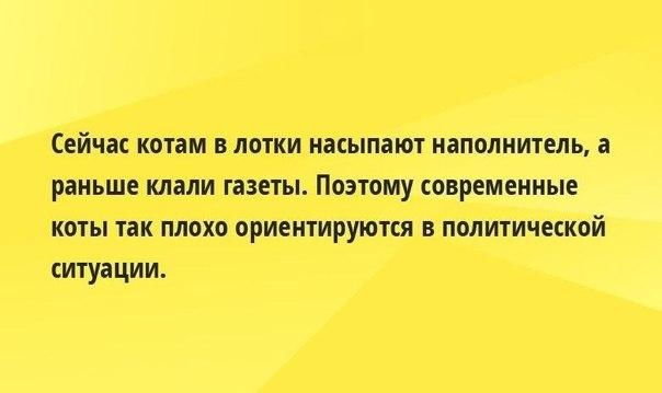 http://cs308519.vk.me/v308519278/af3d/YAZ279DzpaU.jpg