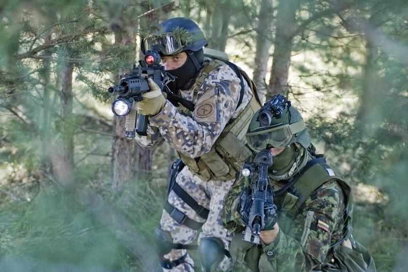 Armée lituanienne/Lithuanian Armed Forces - Page 3 YIZIXXOJ5g8