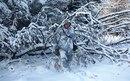 Зимний маскхалат, подробные фото Охота на гуся, маскхалаты, маскировочные костюмы.