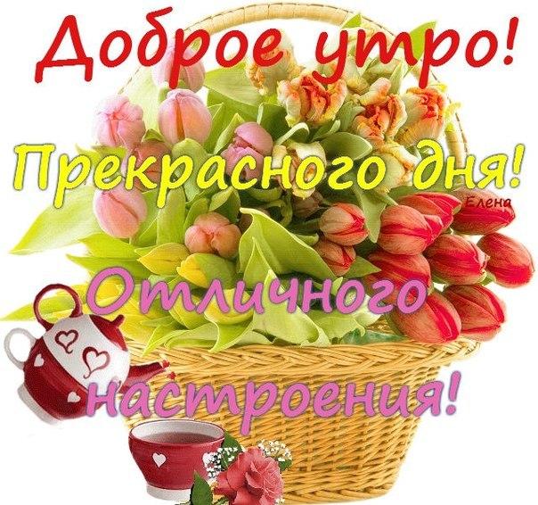 http://cs308530.vk.me/v308530014/68ff/pdhu5t72WTY.jpg
