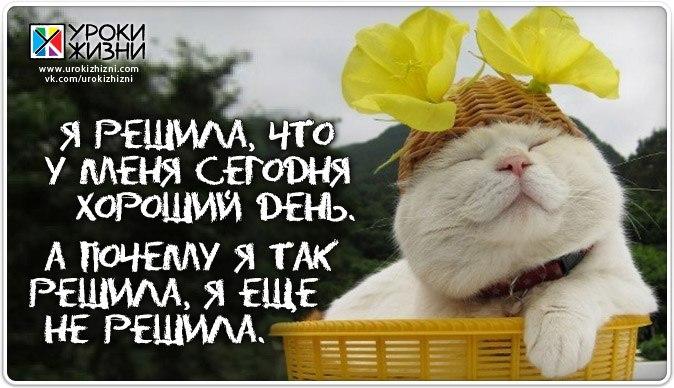 http://cs308616.userapi.com/v308616881/3d9a/UZsBLyr_OO4.jpg