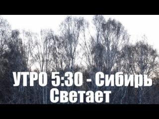 Утро 5:30, Сибирь, Лес, Березы, Деревня - (В гостях у Метатроныча)