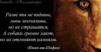 Денис Щёлоков, 7 августа 1996, Тольятти, id47649707