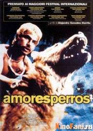 Смотреть Сука любовь / Amores Perros онлайн