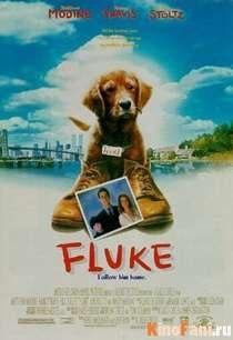 Смотреть Флюк / Fluke онлайн