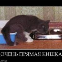 Денис Бузин, 23 сентября 1981, Нижний Новгород, id197848844