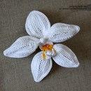 Вязаная орхидея от Аси Коваль. http://www.livemaster.ru/topic/9928...j-mk-so-shemami.