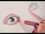 Уроки рисования с Lee Hammond: рисуем лицо цветными карандашами
