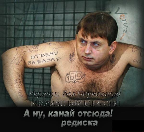 Европейский суд в самое ближайшее время оправдает Тимошенко, - Катеринчук - Цензор.НЕТ 3877