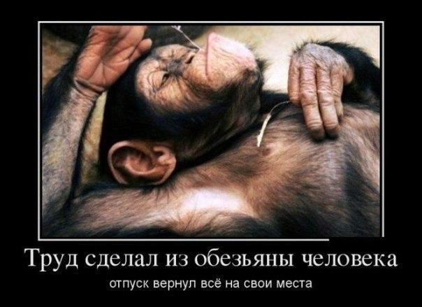 http://cs308822.vk.me/v308822083/8682/hd5OZSebrUQ.jpg