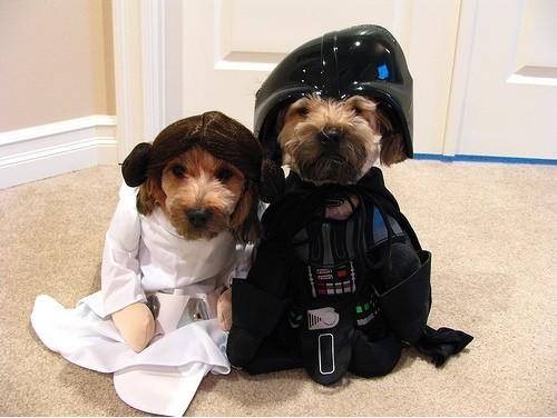 Новости Звездных Войн (Star Wars news): Конкурс безумных историй от Стенда StarWars на EveryCon продолжается!