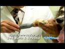 Pedi Paws - As Seen on TV @ Bed Bath & Beyond