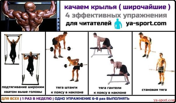 План тренировок для похудения в тренажерном зале