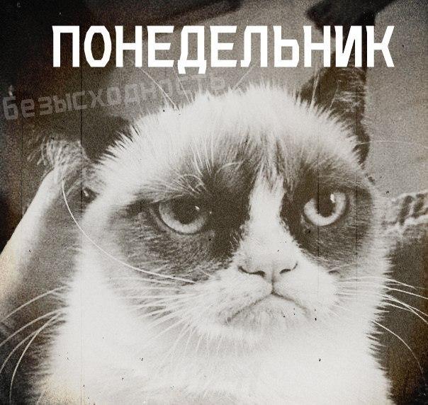 http://cs308827.vk.me/v308827348/5aa2/V1C4gCv4shc.jpg
