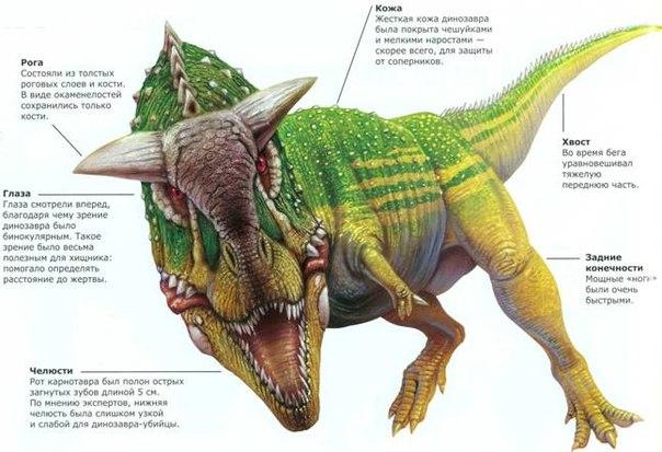 Большинство динозавров были слишком крупными