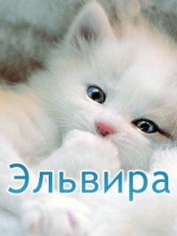 Муратова Эля, 17 декабря 1994, Астрахань, id184463072