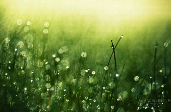 Эзотерика, саморазвитие и личностный рост