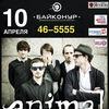 10 АПРЕЛЯ! ANIMAL ДЖАZ В КЕМЕРОВО! НК «БАЙКОНУР»