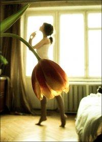 Алиса Смирнова, 10 ноября 1988, Санкт-Петербург, id97138946