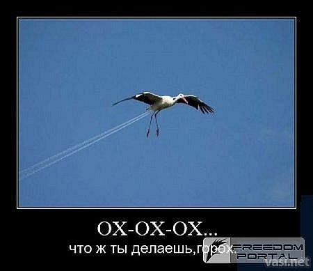 x_f8bdd1e7.jpg