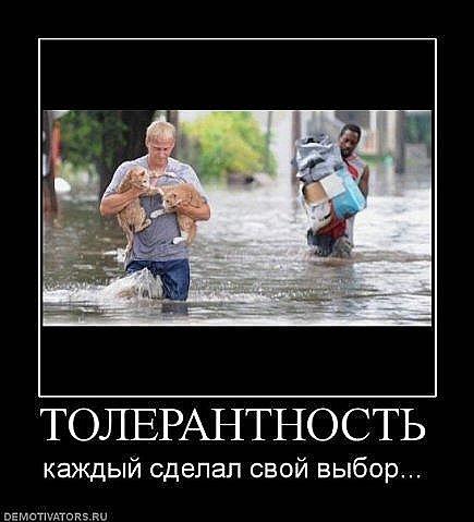 http://cs314.vkontakte.ru/u13918298/101734579/x_dc44519c.jpg