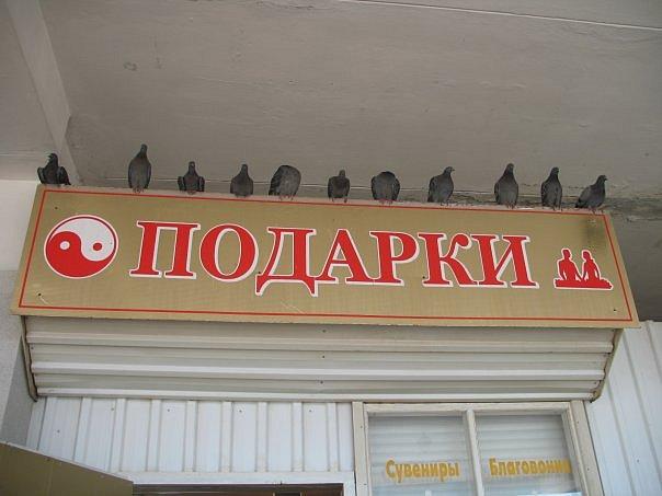 http://cs314.vkontakte.ru/u14783717/92597650/x_839e9471.jpg