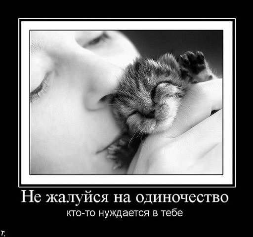 http://cs315.vkontakte.ru/u13918298/101734579/x_92fddec4.jpg